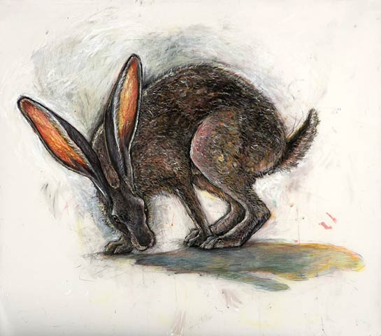 <em>Jackrabbit</em>, 2005, Mixed Media/Drafting Film, 36 x 42""