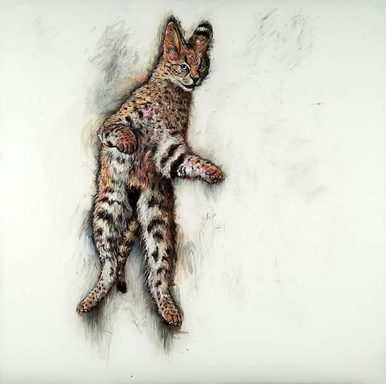 <em>Jumping Serval</em>, 2004, Mixed Media/Drafting Film, 39 x 39""