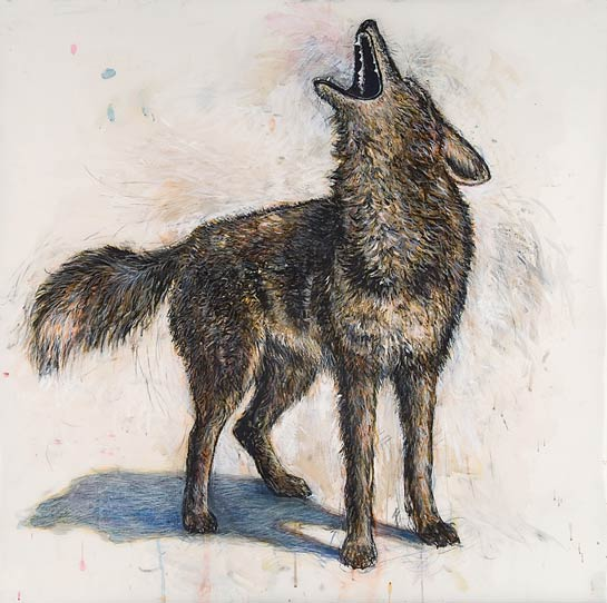 <em>Coyote</em>, 2004, Mixed Media/Drafting Film, 42 x 42""
