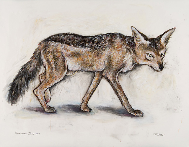 <em>Black Backed Jackal</em>, 2004, Mixed Media/Drafting Film, 33 x 43""