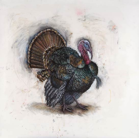 <em>Wild Turkey Tom in Courtship Display</em>, 2004, Mixed Media/Drafting Film, 42 x 42""