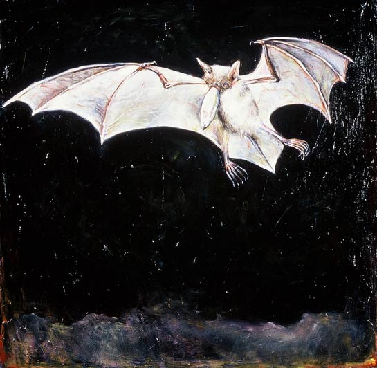 <em>Fisher Bat</em>, 1999, Oil/Panel, 24 x 24""