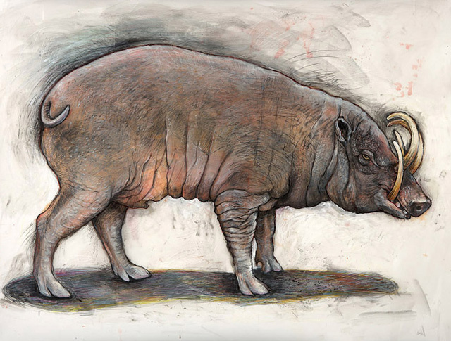 <em>Babirusa</em>, 2006, Mixed Media/Drafting Film, 32 x 42""