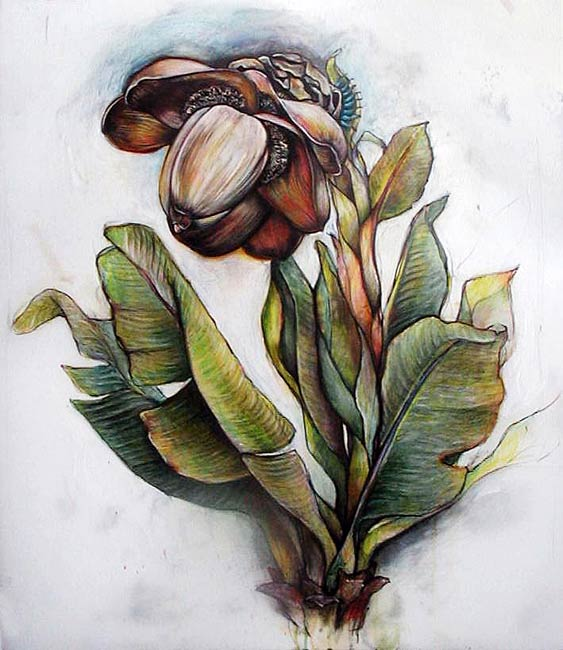 <em>Tropical Plant</em>, 2006, Mixed Media/Drafting Film, 52 x 42""