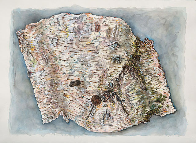 <em>Birch Bark (Scroll)</em>, 2016, Watercolor/Paper, 22 x 30""
