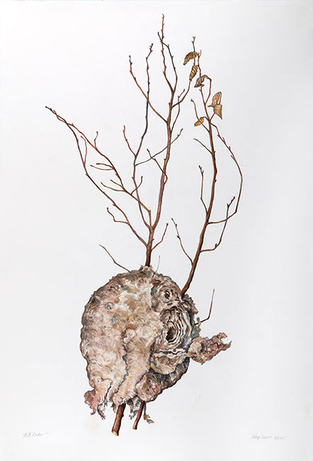 <em>Wasp Nest</em>, 2015, Watercolor/Paper, 44.5 x 30""